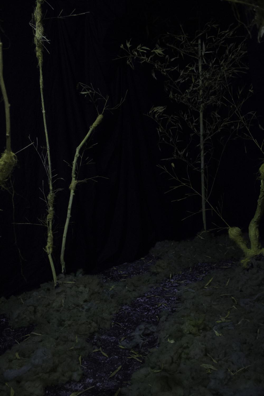 Forêt, décors de Arnaud Degouy